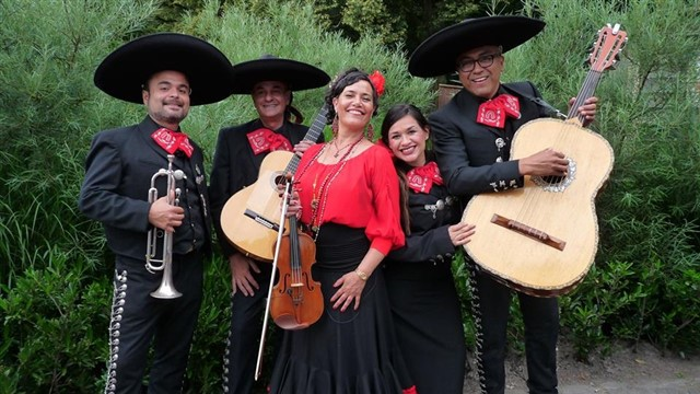 Gipsy Queen, mariachi salsa latin band 4436