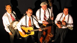 Bluegrass Band - The Oldies